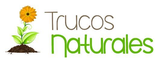 Trucos naturales de Belleza y Salud | Trucosnaturales.com