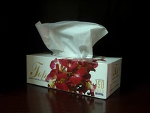 pañuelos-alergias