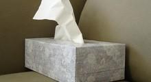 pañuelos-de-papel