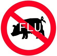 gripe-A-porcina