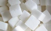 Terrones de azucar